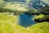 Pešića jezero