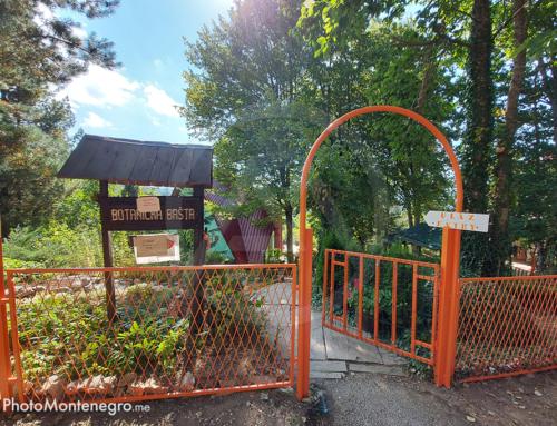 Botanička bašta – Dulovine